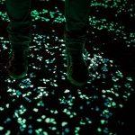 100pcs Glow in the Dark Galets pierres pierres lumineux pour jardin, extérieur, Sable, DIY Aquarium Décor Taille M blanc de la marque Brussels08 image 4 produit