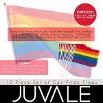 12pièces Ensemble de drapeaux de la Gay Pride–Petit Drapeau arc-en-ciel, Bâtons de drapeaux pour Mardi Gras, LGBT Gay Pride, arc-en-ciel fête–29,7x 19,6cm de la marque Juvale image 3 produit