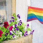 12pièces Ensemble de drapeaux de la Gay Pride–Petit Drapeau arc-en-ciel, Bâtons de drapeaux pour Mardi Gras, LGBT Gay Pride, arc-en-ciel fête–29,7x 19,6cm de la marque Juvale image 2 produit