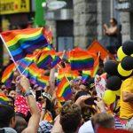 12pièces Ensemble de drapeaux de la Gay Pride–Petit Drapeau arc-en-ciel, Bâtons de drapeaux pour Mardi Gras, LGBT Gay Pride, arc-en-ciel fête–29,7x 19,6cm de la marque Juvale image 1 produit