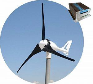 12V i-500 Generateur de Turbine Éolienne + 650W Hybrid Vent Solarie Charge Contrôleur Régulateur de la marque TESUP image 0 produit