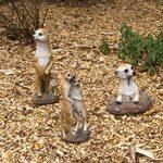 1PLUS Statue de jardin suricate en la construction en résine/Polyrésine, Figurine pour le jardin/extérieur de Domaine de la marque 1PLUS image 4 produit