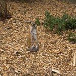 1PLUS Statue de jardin suricate Figurine Couple en résine/Polyrésine, pour le jardin/extérieur de Domaine de la marque 1PLUS image 3 produit
