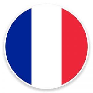 2 x 30cm/300 mm Drapeau France Site Auto-adhésif Autocollant Vinyle Autocollant pour portable Assurance voiture signer Fun #9072 de la marque DestinationVinyl image 0 produit