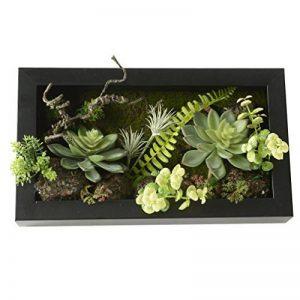3D Fleurs Artificielles Boule Support mural Cactus Mousse sur la pierre feuilles vert herbe Fougères avec cadre forme vase Décoration, 20x 35cm de la marque Artificial Flower-Wall Hanger image 0 produit
