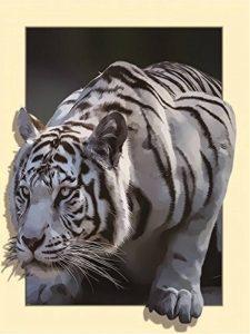 3d stéréoscopique Tigre blanc 5d Diamant kit Peinture par numéro partielle perceuse Broderie au point de croix DIY Art Craft Home Décor mural (35cm x 45cm) de la marque WesGen image 0 produit