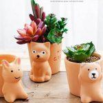 5cinq Pots de fleurs Terre cuite Rouge animaux Intérieur Desk Mini Flesh Pots de fleurs & # nitrure; Ours et Carbide PCB;, Red, cat de la marque 5Five image 1 produit