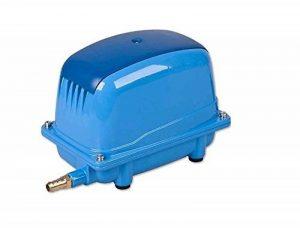 'AQUAFORTE Pompe à air à économie d'énergie AP-35, 20W, 30L/Min (à 1m), Pression Max.: Bleu AP-200 Bleu de la marque Aqua Forte image 0 produit