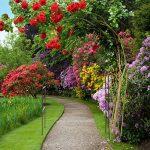 arche de jardin TOP 7 image 1 produit