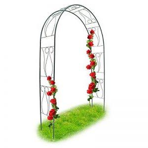 arche de jardin TOP 8 image 0 produit