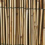 Arella in bambu 'm 2X3 de la marque BIACCHI ETTORE SRL image 1 produit