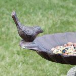 Bain d'oiseau en fonte inséparables 18cm–Welcome to the Birds vers votre jardin CE Printemps. de la marque Dibor - French Style Accessories for the Home image 2 produit