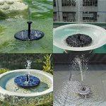 bain oiseaux solaire TOP 13 image 1 produit