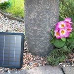 bain oiseaux solaire TOP 2 image 2 produit