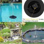 bain oiseaux solaire TOP 6 image 3 produit