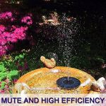 bain oiseaux solaire TOP 9 image 3 produit