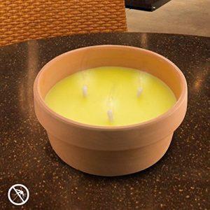 bougie anti moustique TOP 7 image 0 produit