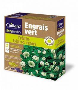 Caillard PFCN19305 Pack de Graines Trèfle Blanc Taille Naine 600 m² de la marque Caillard image 0 produit