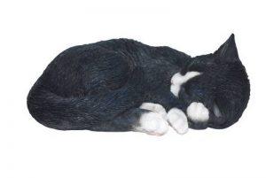 Vivid Arts D/écoration chat endormi Taille/L