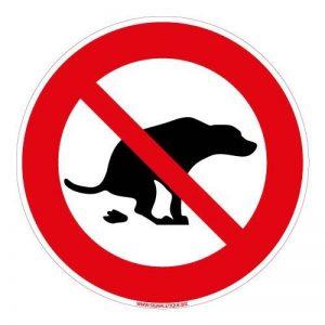 chien interdit TOP 10 image 0 produit