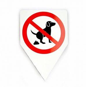chien interdit TOP 3 image 0 produit