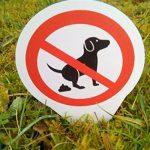 chien interdit TOP 7 image 2 produit