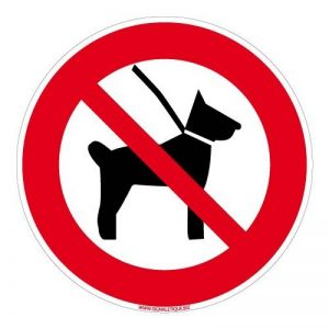 chien interdit TOP 9 image 0 produit