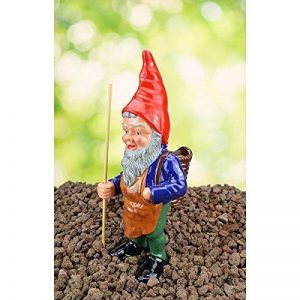 collectionneur nain de jardin TOP 10 image 0 produit