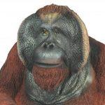 colourliving 'Figurine orang-outan Grégoire Singe singe de l'homme primates Jardin Figurine animaux décoration de la marque colourliving image 3 produit