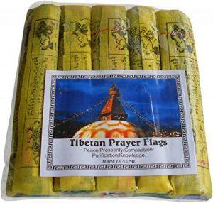 Commerce équitable bouddhiste tibétain népalais Chevaux de vent Coton drapeaux de prière–Lot de 525Ficelle 22cm x 16cm de la marque NATURAL FLOW image 0 produit