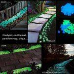déco jardin pierre blanche TOP 6 image 4 produit