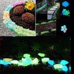 déco pierre jardin TOP 8 image 3 produit