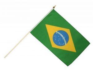 Digni Drapeau Brésil sur hampe de la marque Digni image 0 produit
