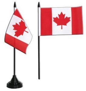 Digni® Drapeau de table Canada, mini drapeau - 10 x 15 cm de la marque Digni image 0 produit