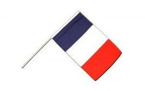 Digni Drapeau France sur hampe - 60 x 90 cm de la marque Digni image 0 produit