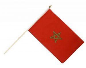 Digni Drapeau Maroc sur hampe de la marque Digni image 0 produit
