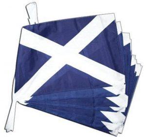 Digni Grande Guirlande 12 drapeaux Ecosse - 30 x 45 cm/8,9 sticker gratuit de la marque Digni image 0 produit