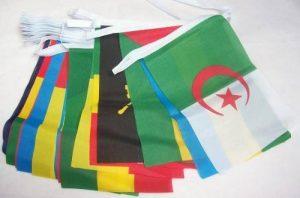 drapeau afrique TOP 4 image 0 produit