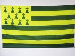 DRAPEAU BRETAGNE MELEN HA GWER 90x60cm - DRAPEAU BRETON JAUNE ET VERT - NANTES 60 x 90 cm Fourreau pour hampe - AZ FLAG de la marque AZ FLAG image 0 produit