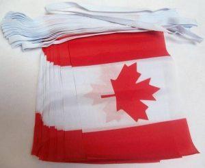 drapeau canada TOP 4 image 0 produit