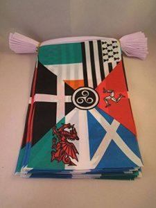 drapeau celte TOP 4 image 0 produit