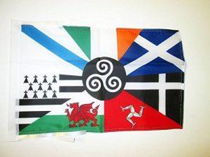 drapeau celte TOP 6 image 0 produit