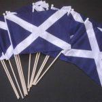 drapeau écossais TOP 5 image 2 produit