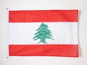drapeau du liban TOP 3 image 0 produit