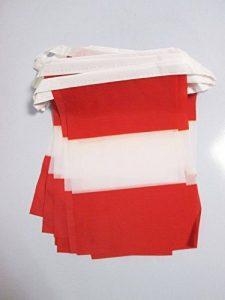 drapeau du pérou TOP 7 image 0 produit