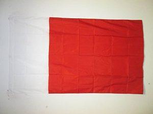 DRAPEAU DUBAÏ 150x90cm - DRAPEAU DOUBAI AUX ÉMIRATS ARABES UNIS 90 x 150 cm Fourreau pour hampe - AZ FLAG de la marque AZ FLAG image 0 produit