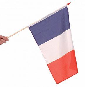 DRAPEAU FRANCE 45X30cm avec Hampe de la marque France image 0 produit