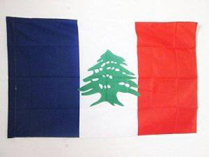 DRAPEAU GRAND LIBAN 1920-1943 90x60cm - DRAPEAU DU LIBAN FRANÇAIS 60 x 90 cm Fourreau pour hampe - AZ FLAG de la marque AZ FLAG image 0 produit