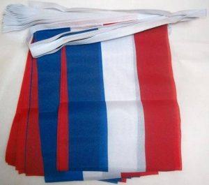 drapeau hollandais TOP 2 image 0 produit