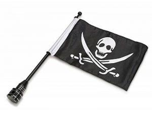 drapeau indicateur de vent TOP 3 image 0 produit